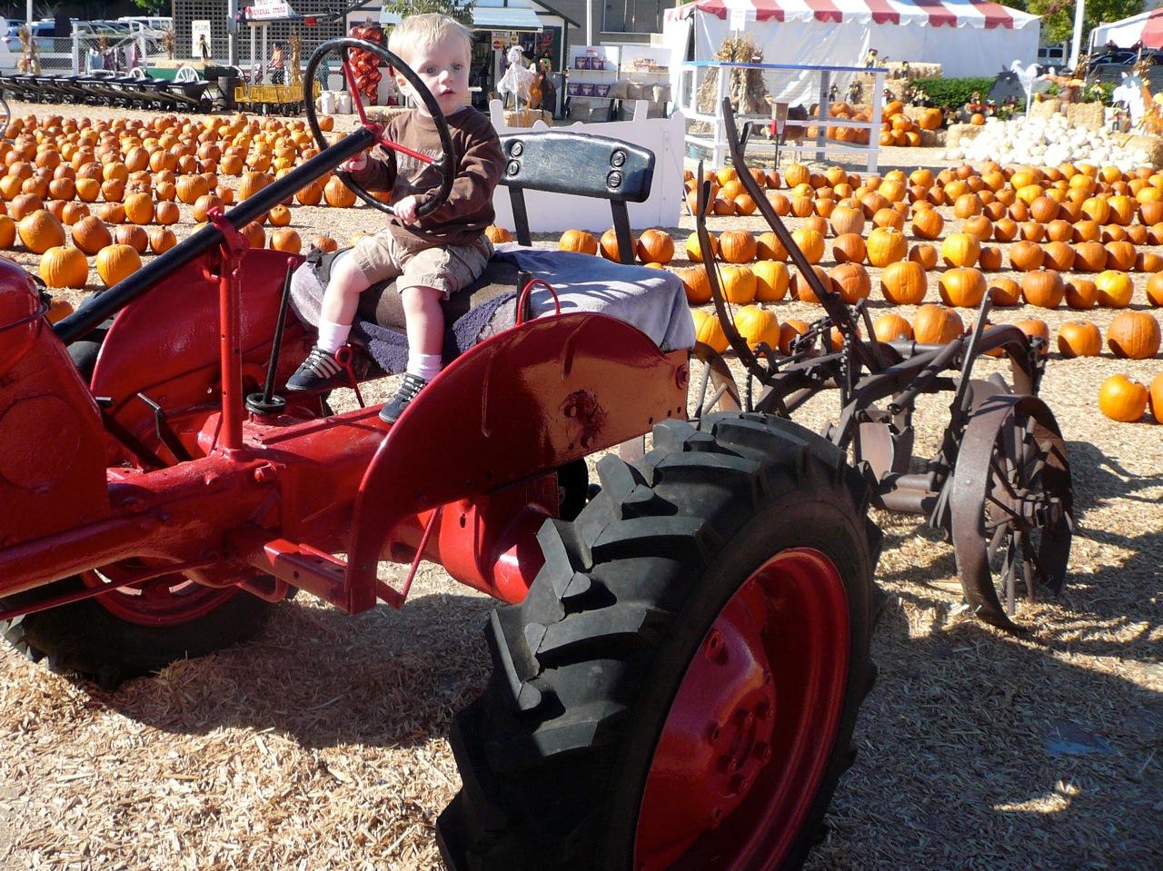 pumpkincity
