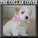 The Collar Cover www.TheCollarCover.com